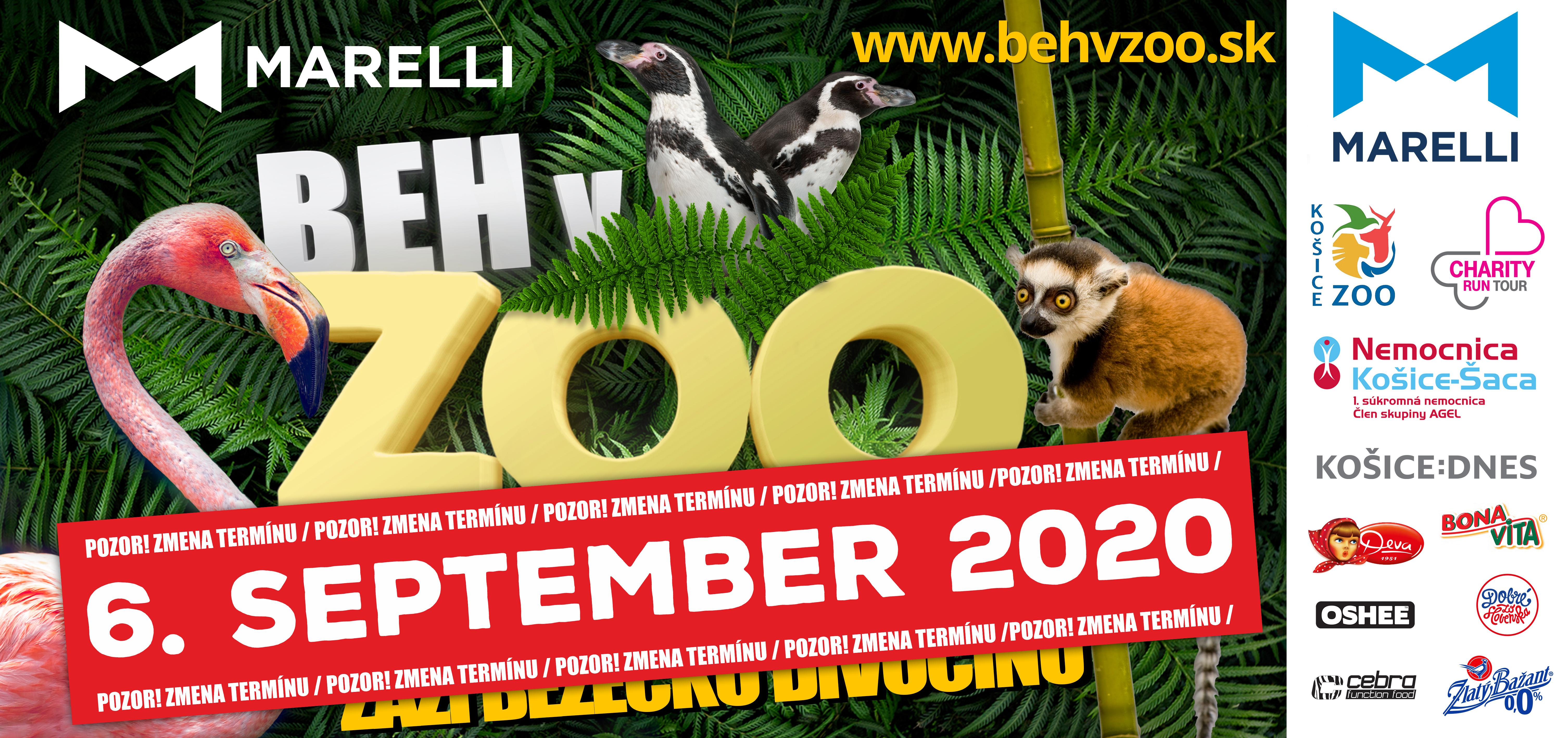 active-life-beh-v-zoo-zmena-2020