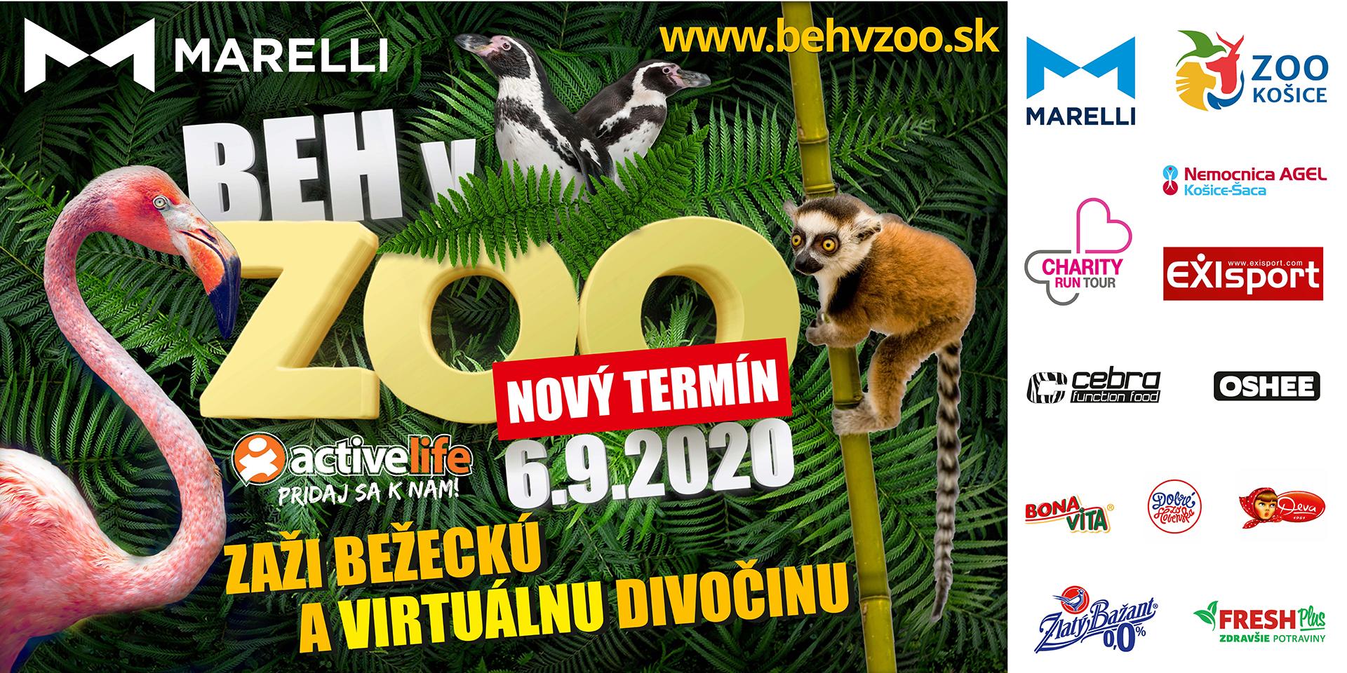 active-life-marelli-beh-v-zoo-2020